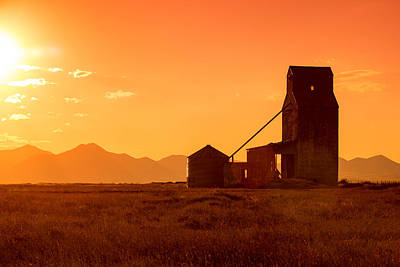 Wheat Silhouette Photograph - Stanford Sunset by Todd Klassy