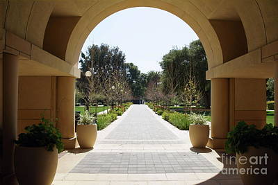 Photograph - Stanford University Palo Alto California Dsc669 by San Francisco Art and Photography