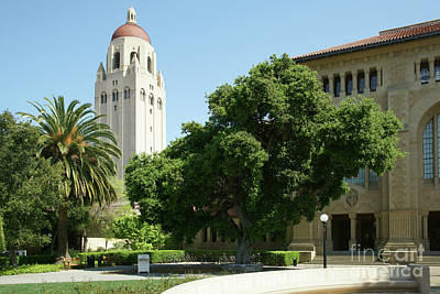 Photograph - Stanford University Palo Alto California Hoover Tower Dsc646 by San Francisco Art and Photography