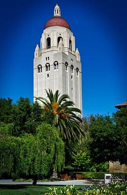 Stanford's Hoover Tower Art Print