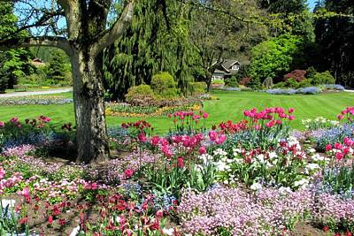 Photograph - Stanley Park Garden by Frank Townsley