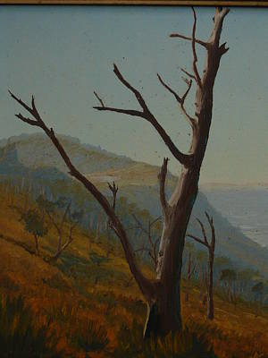Painting - Stanwell Hieghts Nsw 1974 by Terry Perham