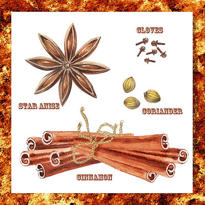 Cookbook Painting - Star Anise Cloves Coriander Cinnamon by Irina Sztukowski