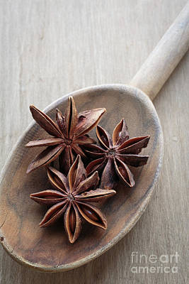 Star Anise On A Wooden Spoon Art Print by Edward Fielding