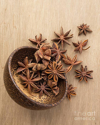 Kitchen Decor Photograph - Star Anise Pods by Edward Fielding