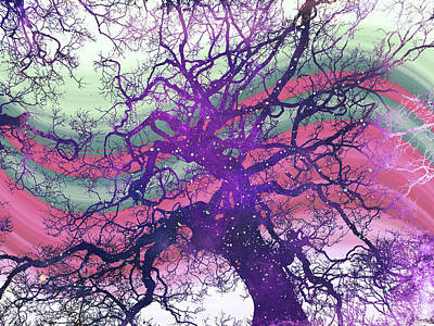 Digital Art - Star Baum by Shawna Rowe