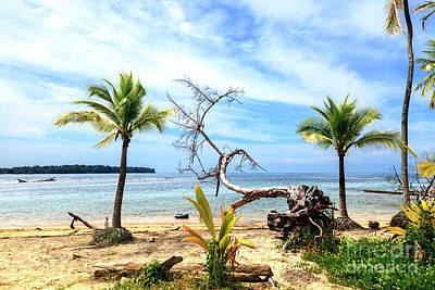 Photograph - Star Beach Profile At Bocas Del Toro Panama by John Rizzuto