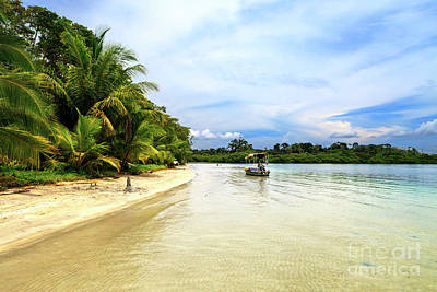Photograph - Star Beach Serenity At Bocas Del Toro Panama by John Rizzuto