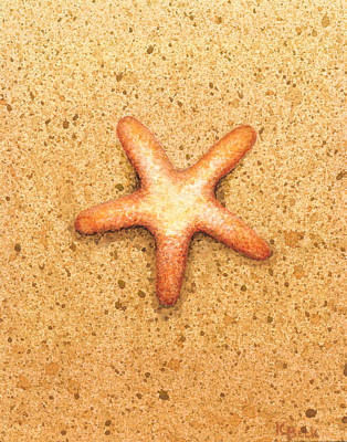 Shell Painting - Star Fish by Katherine Young-Beck