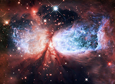 The Heavens Photograph - Star Gazer by Jennifer Rondinelli Reilly - Fine Art Photography