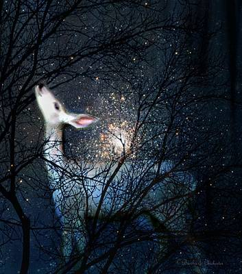 Digital Art - Star Gazing by Barbara Chichester