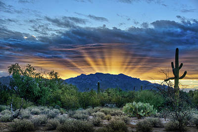 Photograph - Star Light At Dawn by Charlie Alolkoy