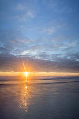 Manzanita Photograph - Star Of Manzanita by Jon Glaser