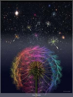 Dandelion Digital Art - Star Seeds by Jim Coe