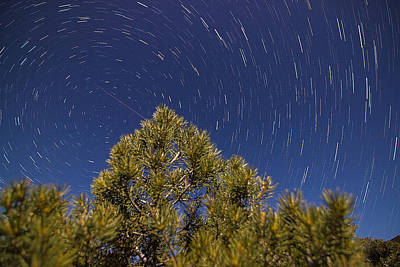 Photograph - Star Trails 6 by Scott Harris