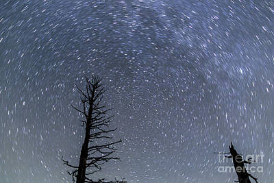 Photograph - Star Trails At Bryce Canyon by Ben Graham