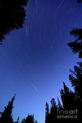 Photograph - Star Trails by Terry Elniski