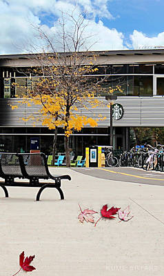 Photograph - Starbucks At Nau by Kume Bryant