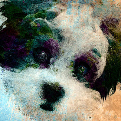 Puppy Mixed Media - Stare by Stacey Chiew