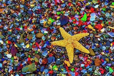 Photograph - Starfish Among Sea Glass by Garry Gay