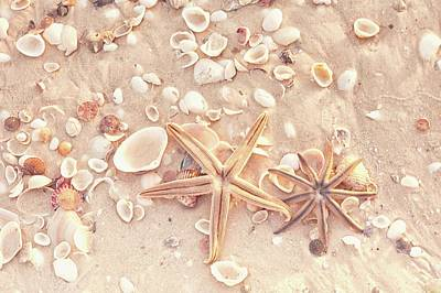 Photograph - Starfish Duo by Framing Places