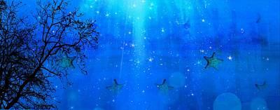 Photograph - Starfish- Etoile De Mer 21 by Jean Francois Gil