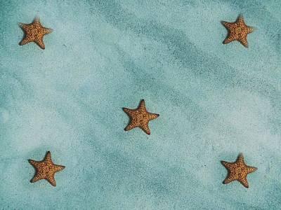 Photograph - Starfish- Etoile De Mer 25 by Jean Francois Gil
