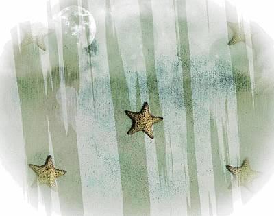 Photograph - Starfish- Etoile De Mer 30 by Jean Francois Gil