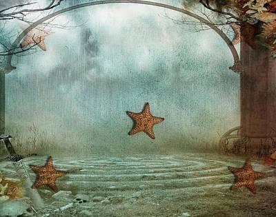 Photograph - Starfish- Etoile De Mer 32 by Jean Francois Gil