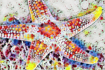 Photograph - Starfish In Polka Dots by Debra and Dave Vanderlaan
