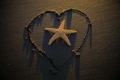 Starfish Inside Heart Art Print by Garry Gay