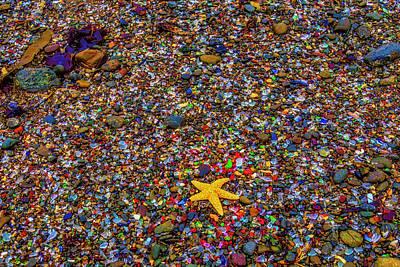 Photograph - Starfish On Glass Beach by Garry Gay