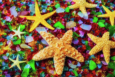 Crushed Photograph - Starfish On Sea Glass by Garry Gay
