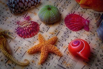 Starfish On Sheet Music Art Print by Garry Gay