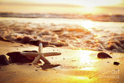 Photograph - Starfish On The Beach At Sunset. Sun Shining On The Sea by Michal Bednarek