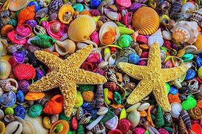 Photograph - Starfish On Tiny Seashells by Garry Gay