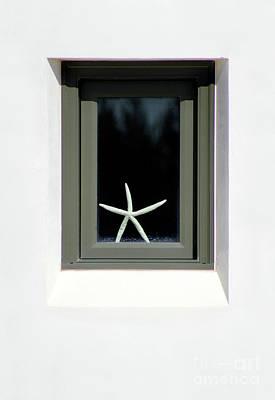 Photograph - Starfish Window 2016 No. 2 by Karen Adams