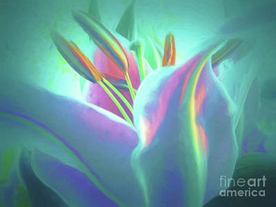 Photograph - Stargazer-floral Abstract by Scott Cameron