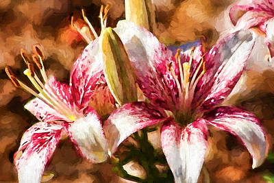 Photograph - Stargazer Lily - Flowers by HH Photography of Florida