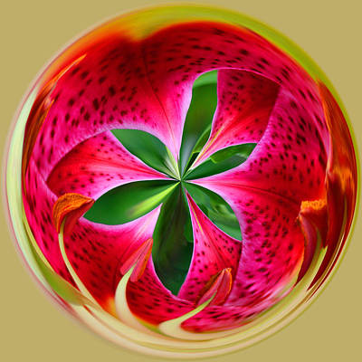 Art Print featuring the photograph Stargazer Lily Orb by Bill Barber