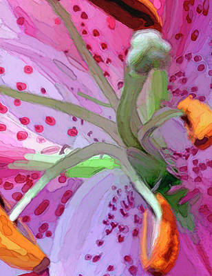 Beautiful Flowers For Mothers Day Digital Art - Stargazer Lily by Vicky Brago Mitchell