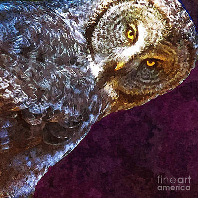 Smart Mixed Media - Staring - Owl Portrait by Stacey Chiew