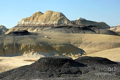 Photograph - Stark Landscape by Frank Townsley