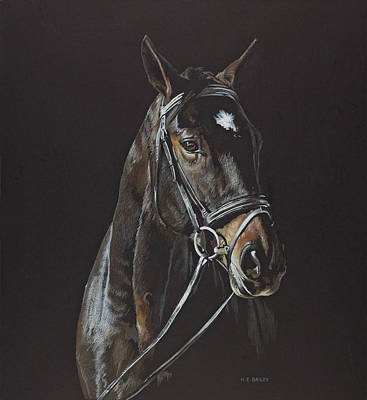 Drawing - Starlight Express by Helen Bailey