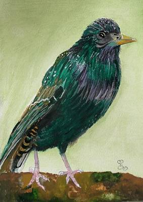 Starlings Painting - Starling by Carole Robins