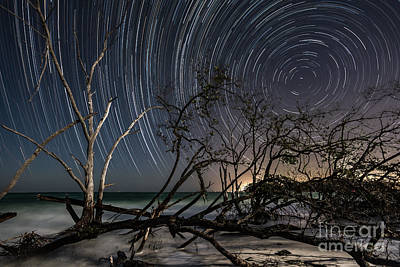Photograph - Starry Night by Damon Powers