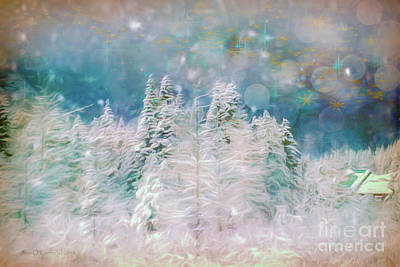 Photograph - Starry Night by Jean OKeeffe Macro Abundance Art