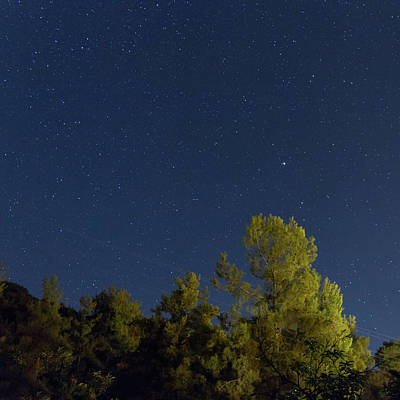 Cyprus Photograph - Starry Night Over The Troodos Forest by Iordanis Pallikaras