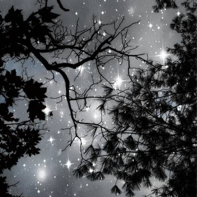 Whimsy Photograph - Starry Night Sky by Marianna Mills
