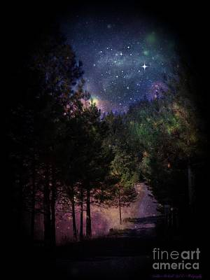 Photograph - Starry Path by Bobbee Rickard